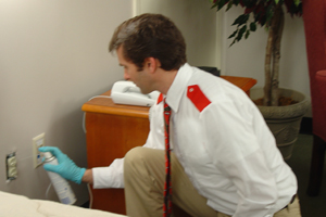 Bed Bug Extermination Barrie