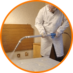 Bed Bug Removal Canada