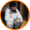 Bed Bug Treatment Professionals