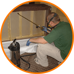 Bed Bug Extermination Specialists